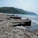 Cette partie de la plage est pleine de posidonies.