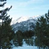 Une ancienne piste de ski