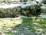 Funtana di a Capiaghja (1057 mètres d'altitude)