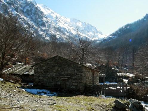 Les bergeries de Capiaghja à 1070 mètres d'altitude
