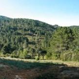 On grimpe un peu, et on se retrouve sur une plaine avec un énorme cairn (à gauche)