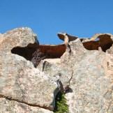 Encore des rochers sculptés
