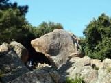 Le rocher de la tête du chien...