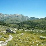 Le chemin redescend le long du Tavignanu