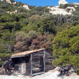 Une cabane sous le lion