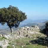 Ruines des châteaux des seigneurs de Balagne