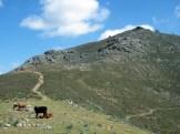 Monte Tumboni