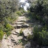 Chemin dallé