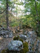 Autour des bergeries, des chemins entourés de pierres