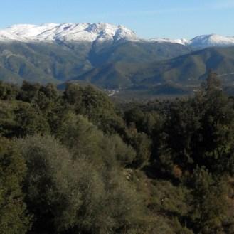 La tour à droite sur fond de montagne enneigée