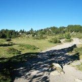 C'est très vert à 2000 mètres dans les Pyrénées. Rien à voir avec la Corse.