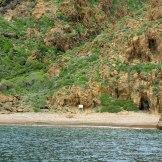 Une plage à Scandola
