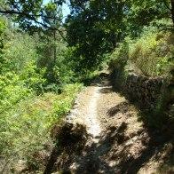 Sur le sentier à Venaco