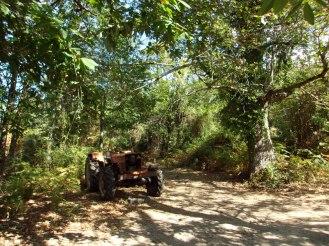 Un tracteur sur le sentier