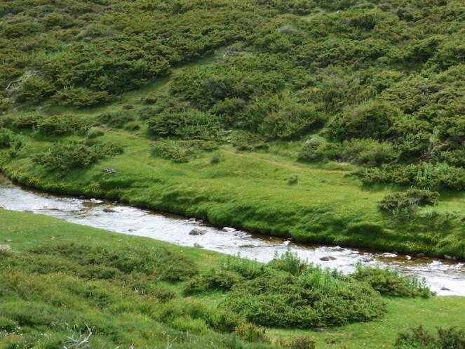 Premier ruisseau, c'est magnifique