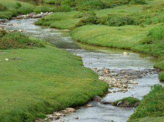 Un ruisseau