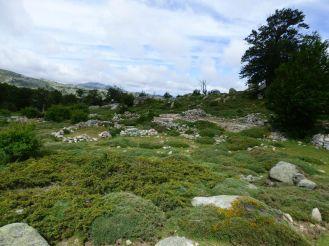 Les ruines d'une bergerie