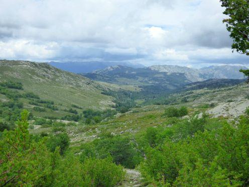 Le plateau du Cuscionu