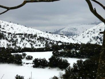 De la neige en Haute-Corse
