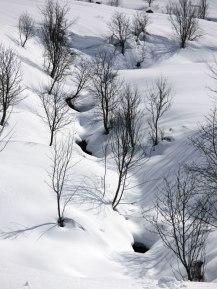Le ruisseau sous la neige