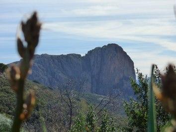 Vue sur le Monte Gozzi