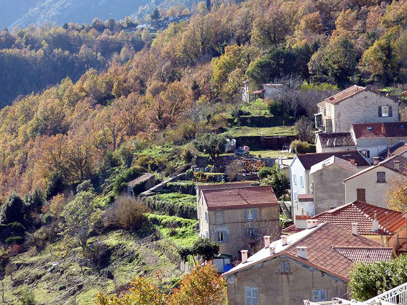Des terrasses à Riventosa