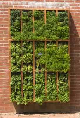 Small Space Gardening Chicago Botanic Garden