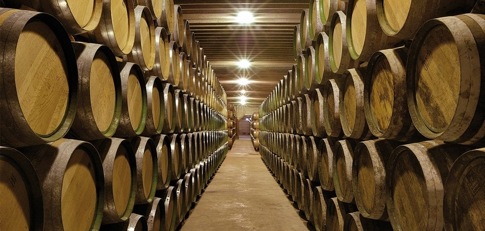 bodegas-muriel-winery-barrels