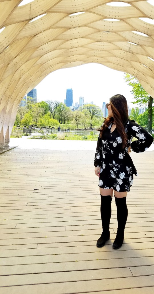 Black and White Dress - Chicago Food Girl