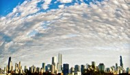 ChicagoTalks Latest iSights Capture Summer in City