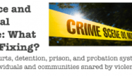 Beyond Simple Solutions: Violence & Criminal Justice in Chicago