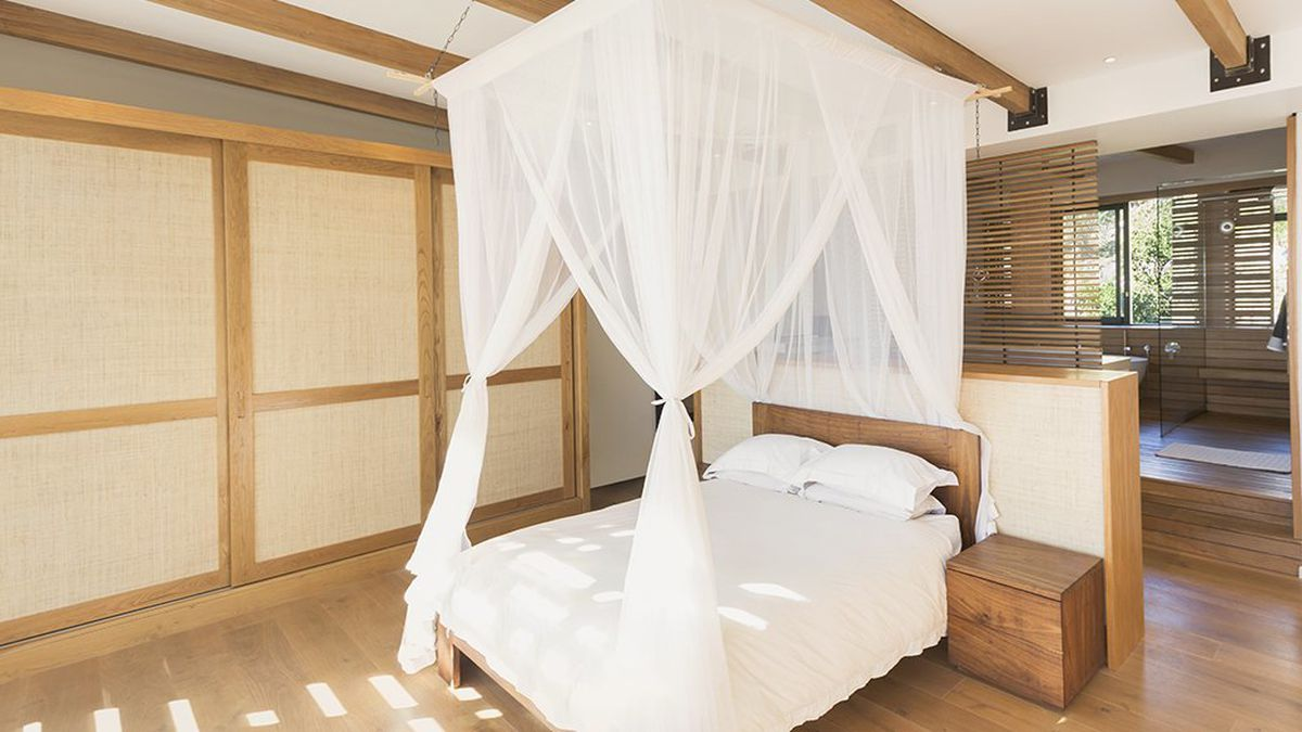 the best bed canopy chicago tribune