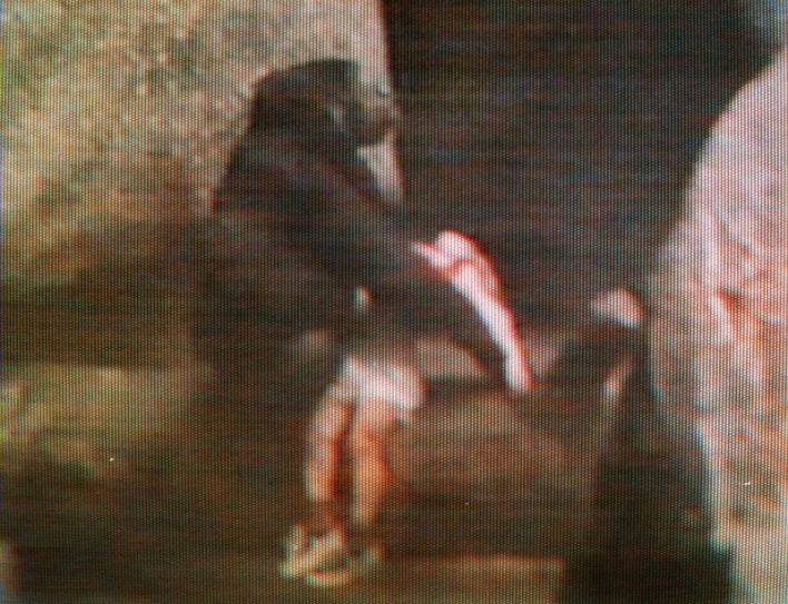 Binti Jua, an 8-year-old female western lowlan gorilla, is shown in an image from television rescuing a toddler who fell into the primate exhibit on Aug. 16, 1996, at Brookfield Zoo