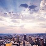 Africa's Business Jungle