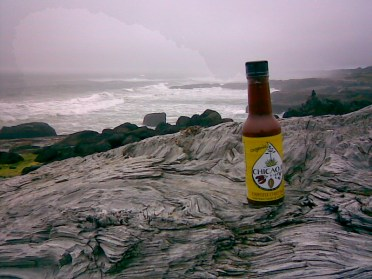 Chicaoji on the Wild Coast of Oregon