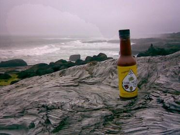 Chicaoji on the Wild Coast of Oregon