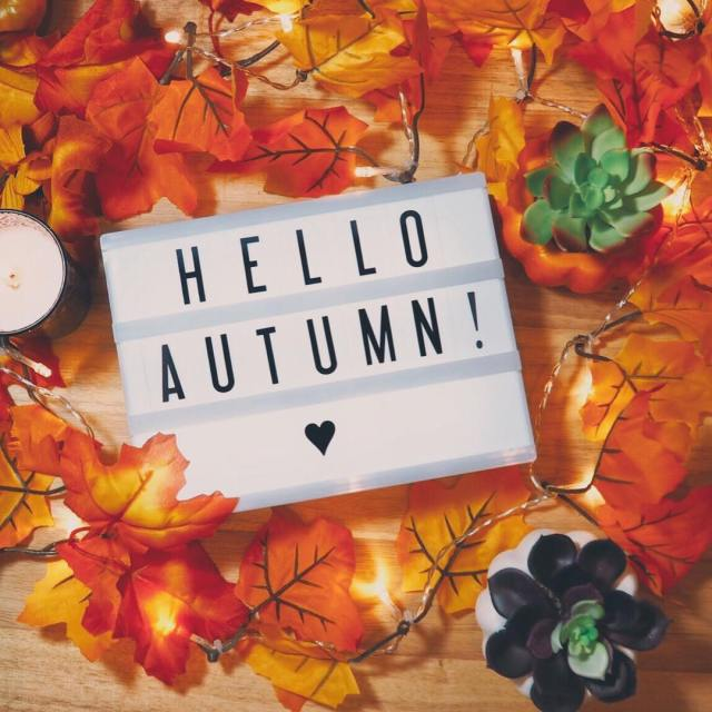 Happy Fall! I am so excited!   Sent viahellip