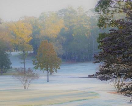 Joulurauhaa ja rakkautta Pohjois-Carolinasta