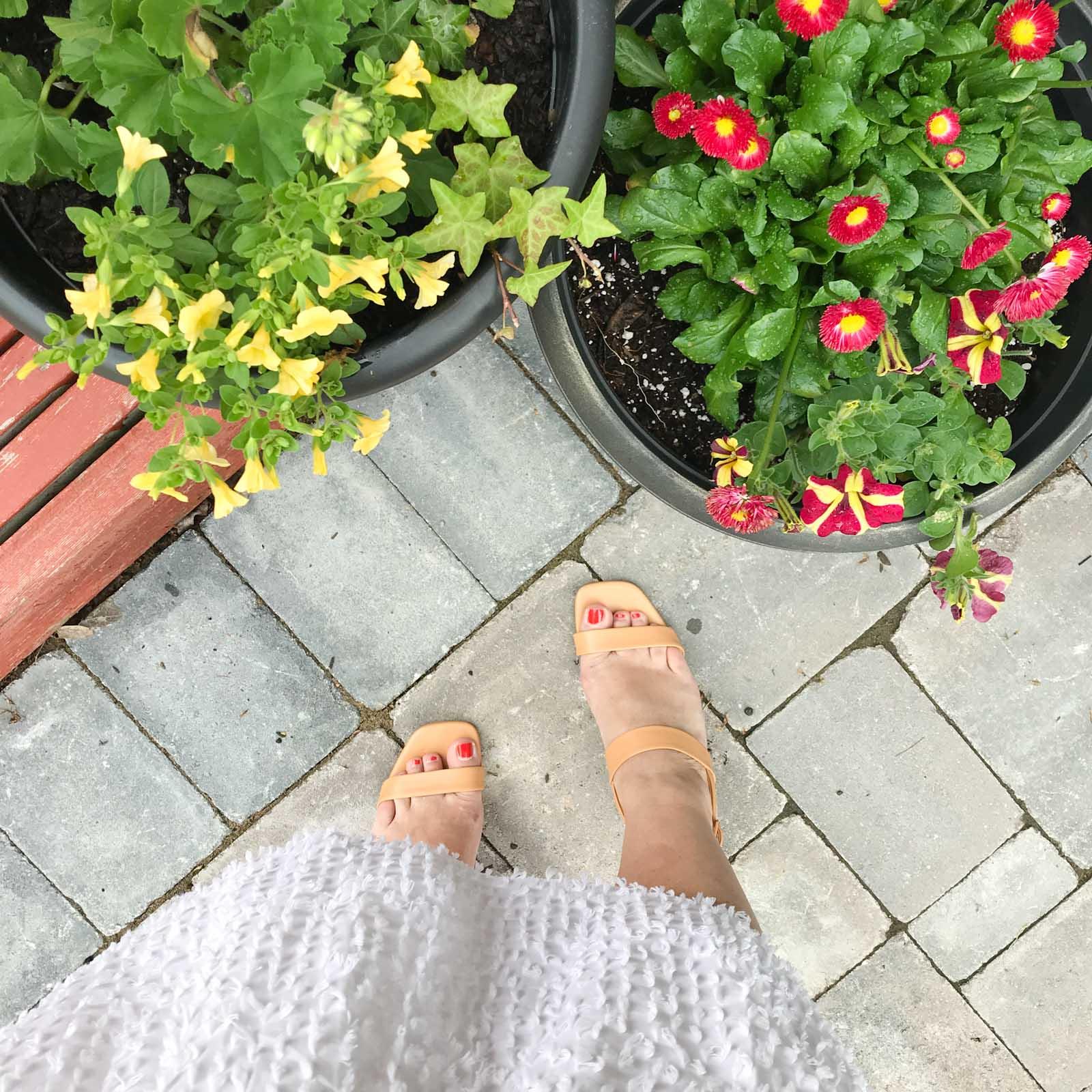 Everlane Double-Strap Block Heel Sandal