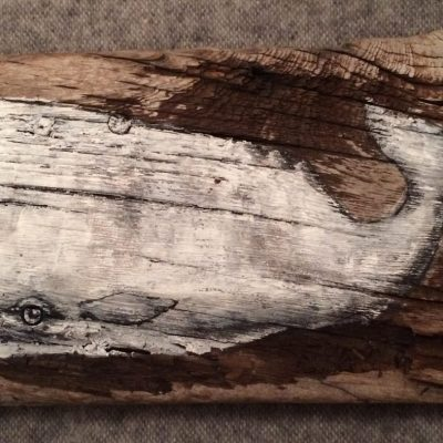 White whale - Acrylic on driftwood - 50cm x 25cm - by Michael Cowley