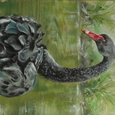 The Black Swan - pastel/ acrylic ink - 350 x 450 mm - by John Marston