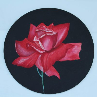 Red Rose - Acrylic - 20