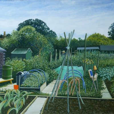 Durford Close Allotment - Gouache - 305mm x 228mm - by Fiona Bell-Currie