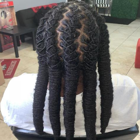 Long braided locs