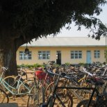 Bicycles under a Tree, African Barrick Gold (Buzwagi)