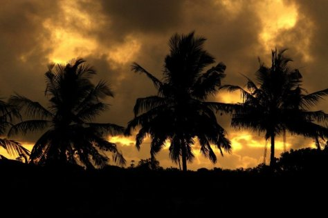 Sunset at KWS Kisite Mpunguti Marine Park