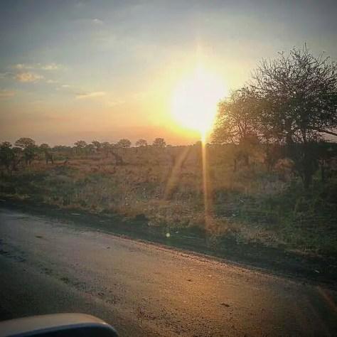 A Sunset, Mikumi National Park, Tanzania