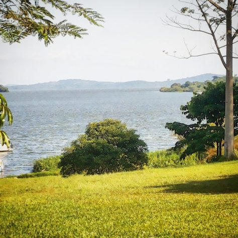 The Bay, Kampala, Uganda