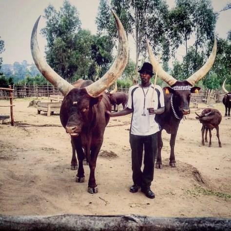 Herdsman at The King's Palace Museum, Nyanza, Rwanda