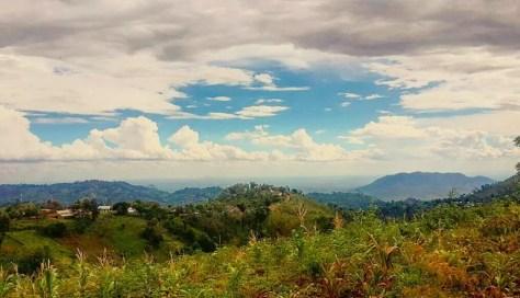 Hiking, Magamba Nature Forest Reserve, Lushoto